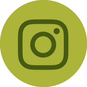 Connect with Collier's Nursery on Instagram